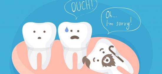 Какая польза от зубов мудрости?